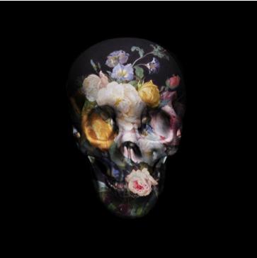 Magnus Gjoel Skull Print
